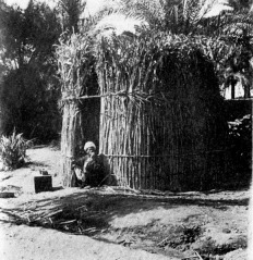 This image,  from the Oriental Institute, University of Chicago, is of a reed and mud hut, perhaps the type that would have been built around and Iset of a Deity in an early Egyptian period.